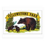 Parque de Yellowstone, Wyoming Postales