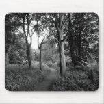 Parque del Bute de maderas, Cardiff Tapetes De Raton