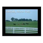 Parque del caballo de Kentucky Tarjetas Postales