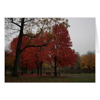 parque del edgewood en la caída tarjeta de felicitación