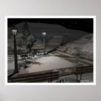 Parque del invierno póster