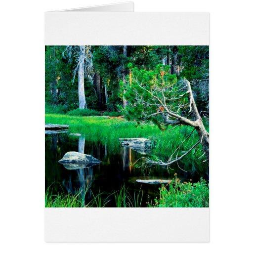 Parque del lago siesta de Yosemite Tarjeta De Felicitación