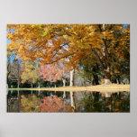 Parque del otoño, charca poster