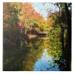 Parque del otoño con el puente azulejo cerámica