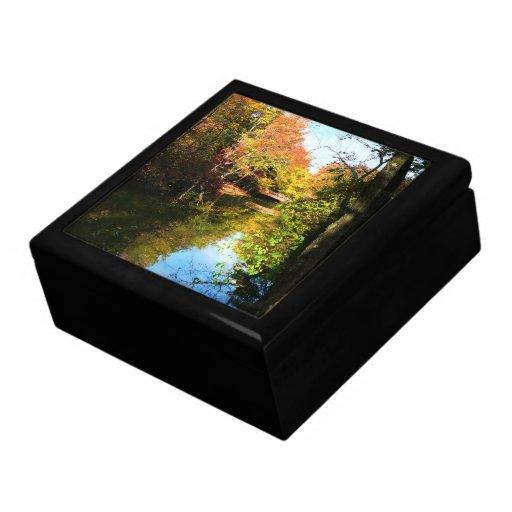 Parque del otoño con el puente cajas de recuerdo