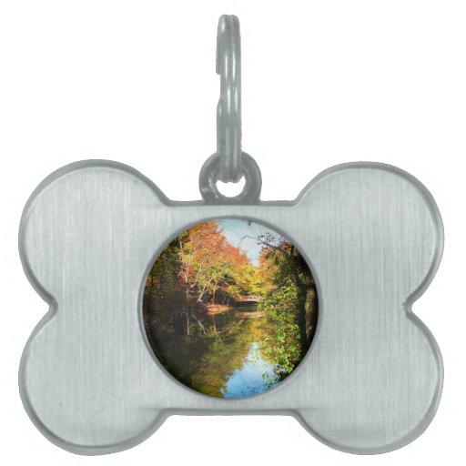 Parque del otoño con el puente placa mascota