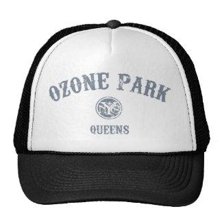 Parque del ozono gorros bordados