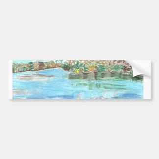 Parque del río etiqueta de parachoque
