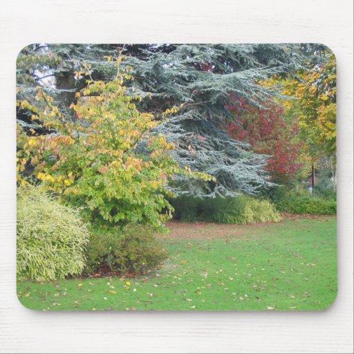 Parque en otoño tapete de raton