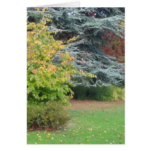 Parque en otoño tarjeta de felicitación