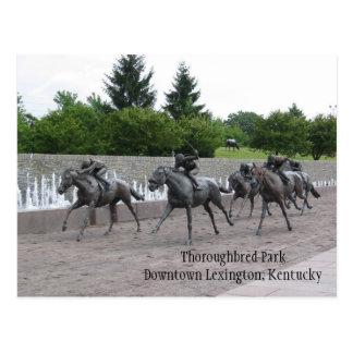 Parque excelente Lexington céntrica,… Tarjetas Postales