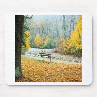 Parque Missoula Montana de Greenough del otoño Tapete De Ratón