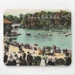 Parque Mousepad de Delaware del vintage Alfombrillas De Raton