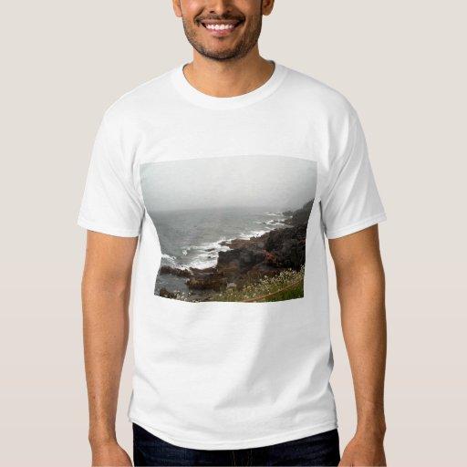 Parque nacional 1 del Acadia Poleras