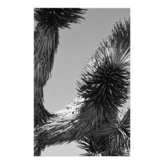 """Parque nacional 4 de la yuca de B&W Folleto 5.5"""" X 8.5"""""""