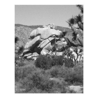 """Parque nacional 5 de la yuca de B&W Folleto 8.5"""" X 11"""""""
