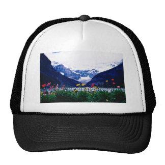 Parque nacional blanco de Banff, flores de Lake Lo Gorros Bordados
