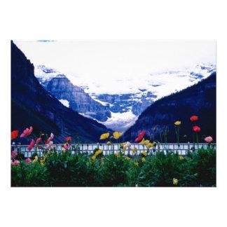 Parque nacional blanco de Banff flores de Lake Lo Anuncios Personalizados