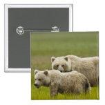Parque nacional de Clark de los E.E.U.U., Alaska,  Pin Cuadrada 5 Cm