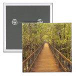 Parque nacional de Daintree (patrimonio mundial de Pin Cuadrado