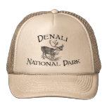 Parque nacional de Denali Gorro