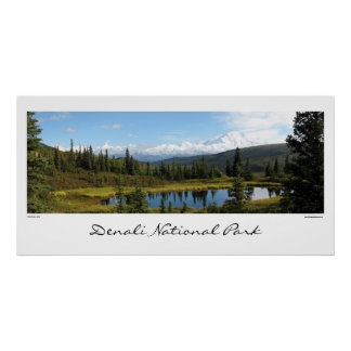 Parque nacional de Denali Poster