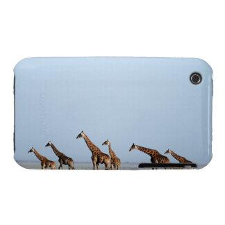 Parque nacional de Etosha, Namibia 2 Case-Mate iPhone 3 Cobertura
