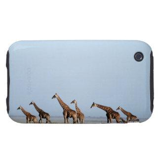 Parque nacional de Etosha, Namibia 2 Tough iPhone 3 Coberturas