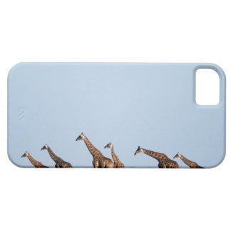 Parque nacional de Etosha, Namibia 2 iPhone 5 Carcasa