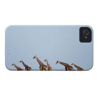 Parque nacional de Etosha, Namibia 2 iPhone 4 Funda