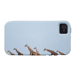 Parque nacional de Etosha, Namibia 2 iPhone 4 Carcasa