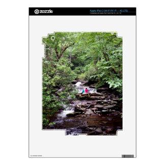Parque nacional de Great Smoky Mountains de los iPad 3 Pegatina Skin