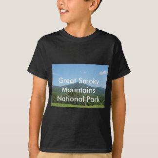 Parque nacional de Great Smoky Mountains Playera