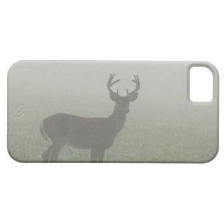 Parque nacional de Great Smoky Mountains, Tennesse iPhone 5 Carcasa