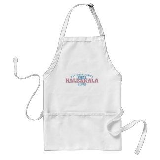 Parque nacional de Haleakala Delantal