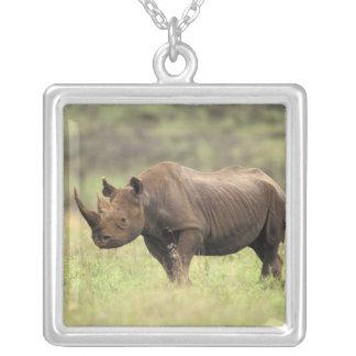 Parque nacional de Kenia Nairobi Rinoceronte neg Collares Personalizados