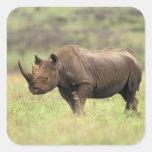 Parque nacional de Kenia, Nairobi. Rinoceronte Pegatina Cuadrada