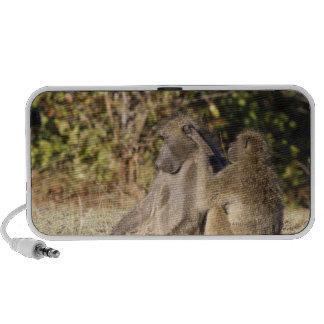 Parque nacional de Kruger, Suráfrica Laptop Altavoces