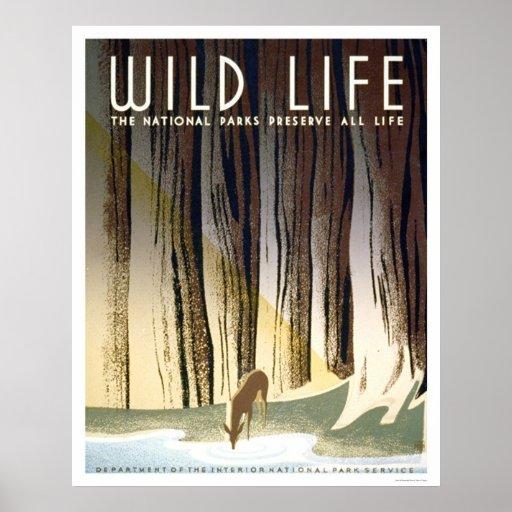 Parque nacional de la vida salvaje WPA 1940 Póster