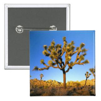 Parque nacional de la yuca, California. LOS E.E.U. Pin
