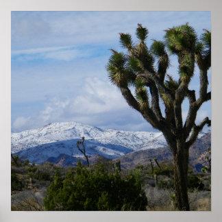 Parque nacional de la yuca impresiones