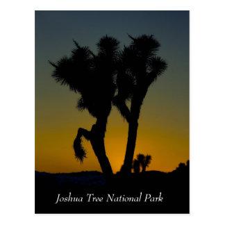 Parque nacional de la yuca, postal de California