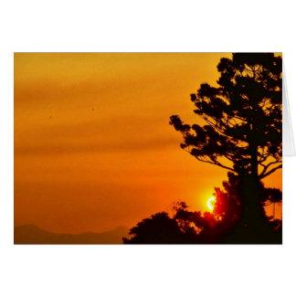 Parque nacional de Lamington, Felicitacion