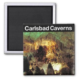 Parque nacional de las cavernas de Carlsbad Imanes Para Frigoríficos