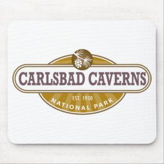 Parque nacional de las cavernas de Carlsbad Tapete De Ratón