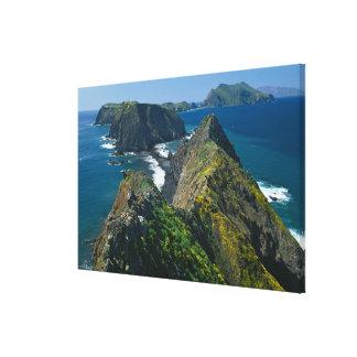Parque nacional de las Islas del Canal, meridional Impresión De Lienzo