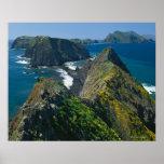 Parque nacional de las Islas del Canal, meridional Poster