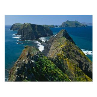 Parque nacional de las Islas del Canal, meridional Tarjeta Postal