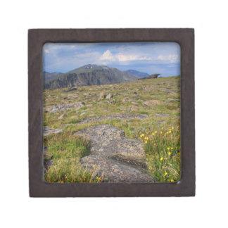 Parque Nacional de las Montañas Rocosas Caja De Recuerdo De Calidad
