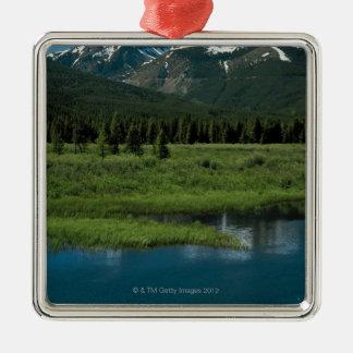 Parque Nacional de las Montañas Rocosas, Colorado Adorno Cuadrado Plateado